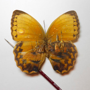 миниатюра на крыльях бабочки  800 х 800