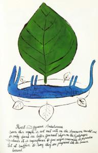 поваренная книга Дикая малина 600 х 934