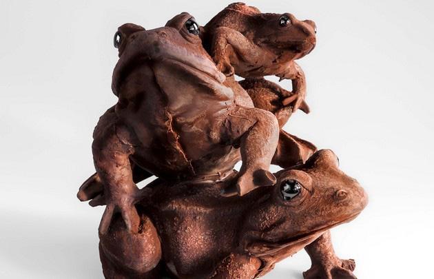 шоколадные лягушки 630 х 405