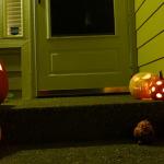 Хэллоуин  600 х 337