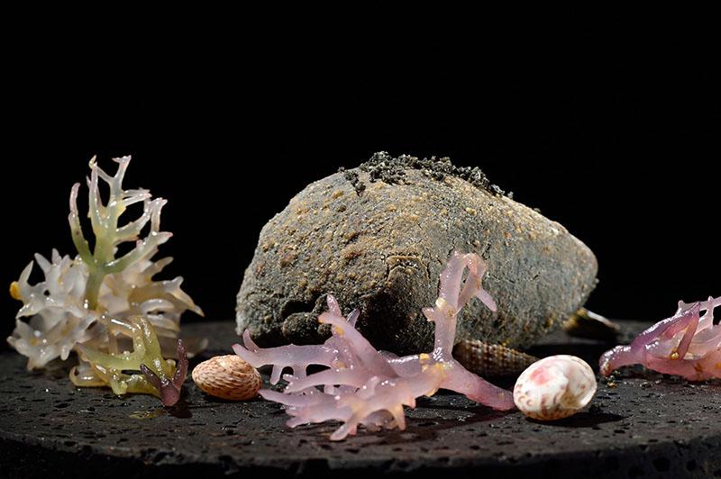 Прибрежный камень 800 х 532