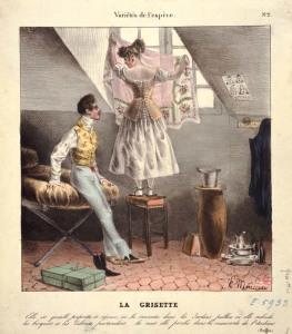 гризетка в мансарде  VARIETE DE L'ESPECE : LA GRISETTE
