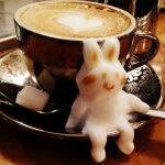 Kazuki Yamamoto-кролик