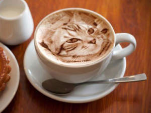cat-latte-art