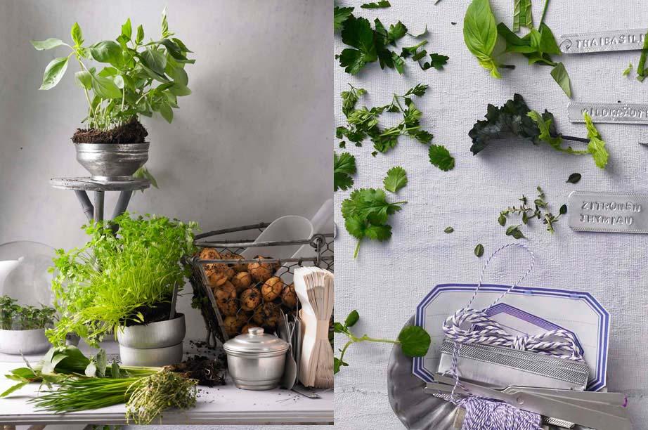 свежая зелень и молодой картофель 900 х 597