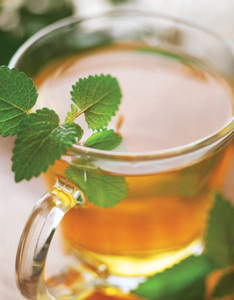 Tea garnished with mint leaves