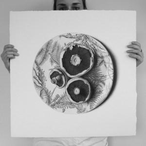 арт-работы-художник CJ Хендри-грибы
