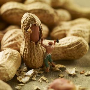 Фрагмент-Minimiam - Pierre Javelle & Akiko Ida-food-miniature-