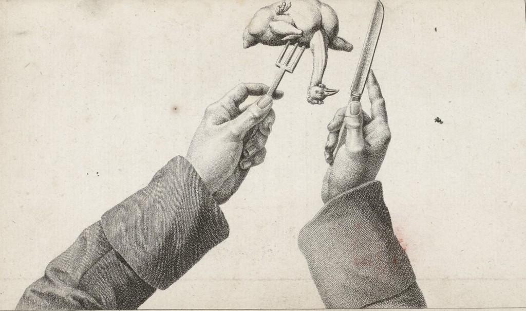 Иллюстрация из «Учебника для амфитрионов» Александра Гримо де Ла Реньера. 1808 год