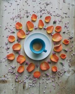 кофейные арт компиляции - Синтия Болоньези (Cinzia Bolognesi)-утреннее солнце