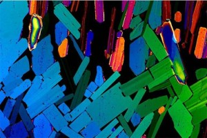 текила-microscope