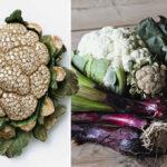 ювелирные украшения в виде овощей